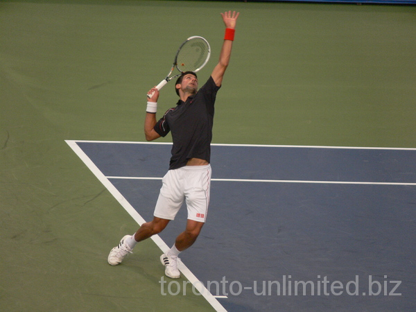 Image Result For Novak Djokovic
